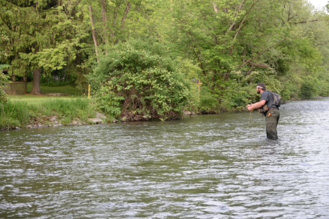 Spring Creek-4